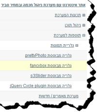 עמודי האתר כאשר חלק מעמודי המשנה גלויים